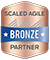 Scaled Agile Partner: Bronze